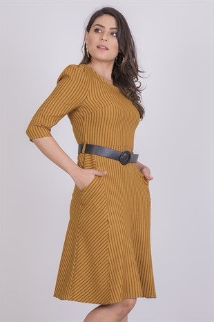Apsen Striped Flared Dress 3843/100
